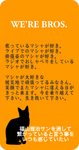 20110314ましゃmessage.jpg